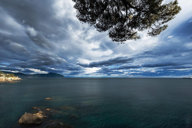 Ligurian Journey