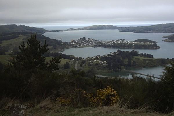 Dunedin_PhotoByTamaLeaver