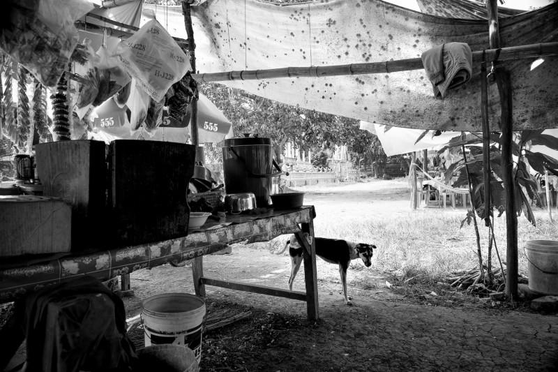Gutwein Cambodia_-37