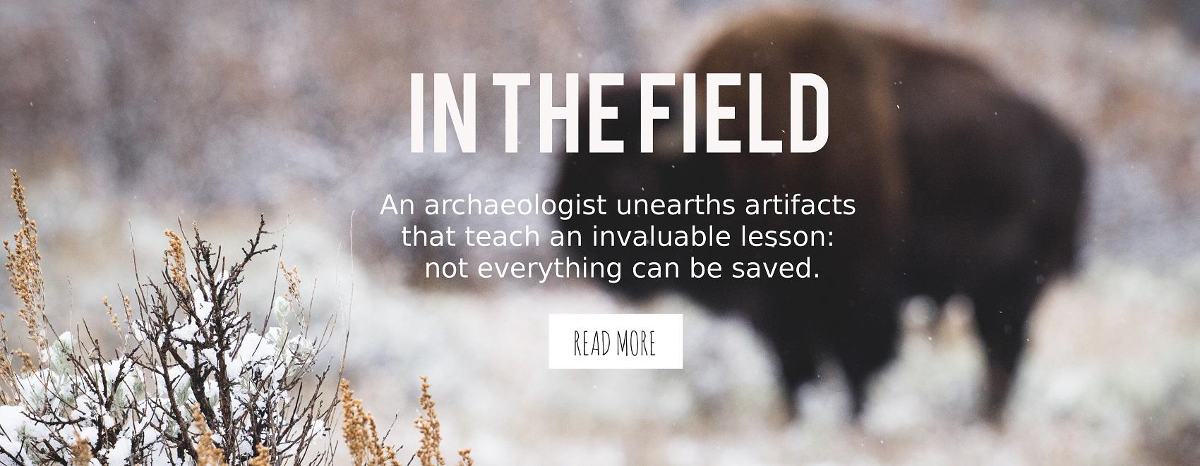 inthefield-readmore2